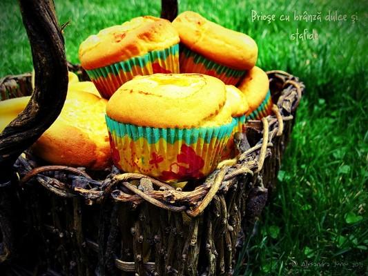 MY MUFFINS ♥ Brioşe cu brânză dulce şi stafide sau Pască în miniatură
