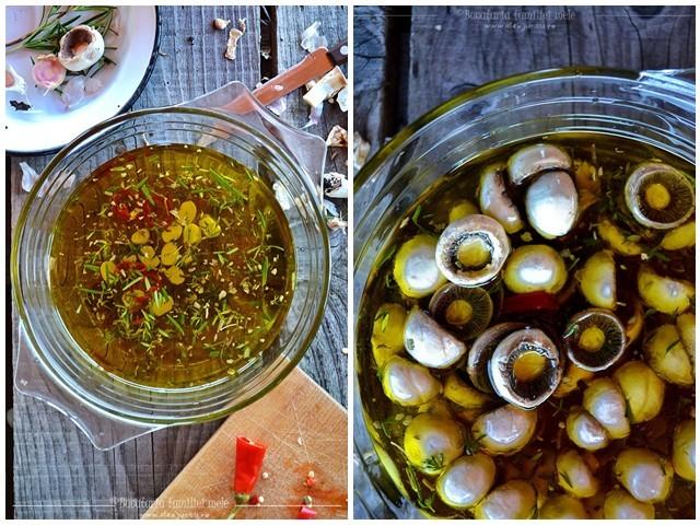 ciuperci in ulei_original