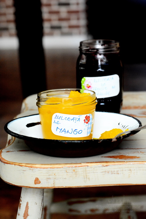 dulceata de mango